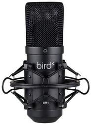 Microphone USB Bird UM1