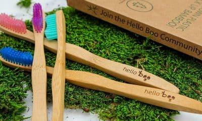 Comparatif meilleure brosse à dent bambou