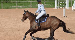 Meilleurs accessoires pour faire du cheval
